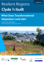 Literature Review Synthesis – What does transformational adaptation look like?